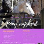 Paardencoaching voor kinderen van 8-12 jaar